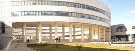 Arab International University - AIU Campus