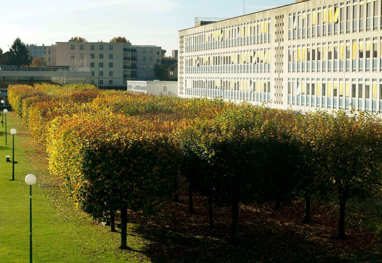 CentraleSupélec Campus