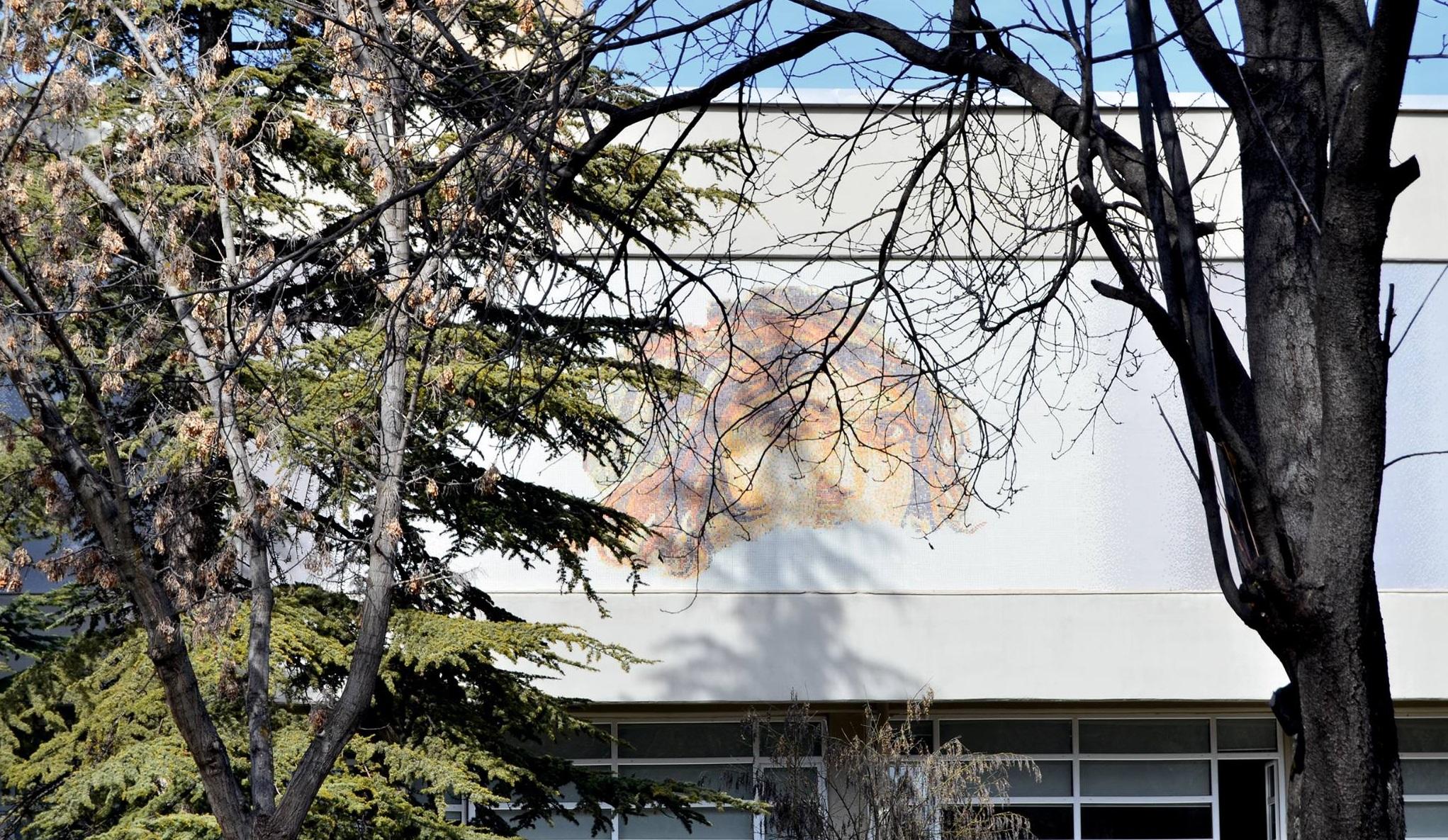 Hacettepe University - HU Campus