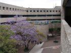 Universidad Pedagógica Nacional – UPN Campus