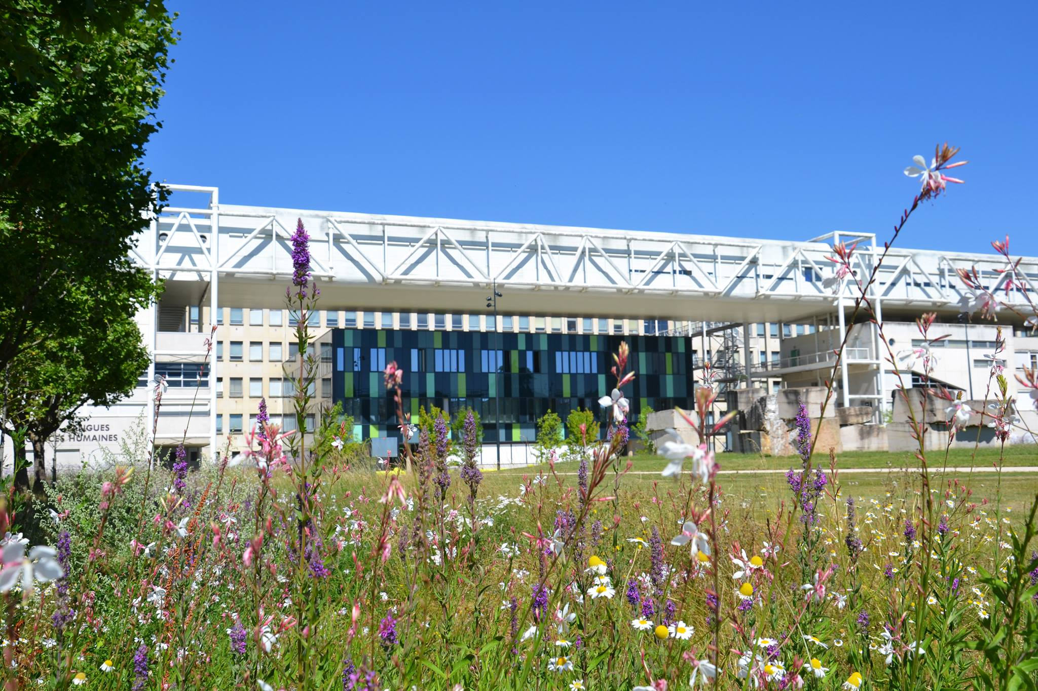 Université de Bourgogne – UB Campus