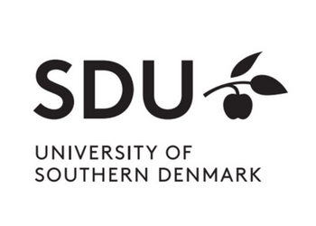 Image result for university of southern denmark logo