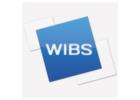 Weller International Business School - WIBS logo