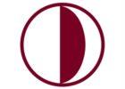 Near East University - NEU logo