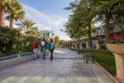 Yasar University Campus