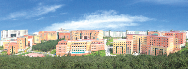 Yeditepe University Campus