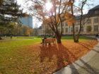 Bucerius Law School Campus