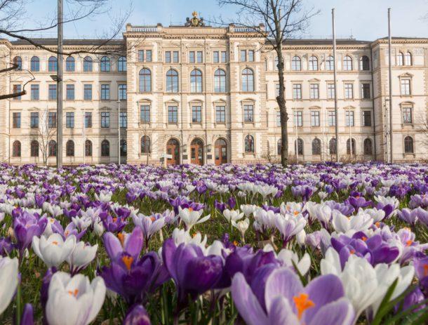 Chemnitz University of Technology Campus
