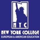 New York college European & American Education - NYC