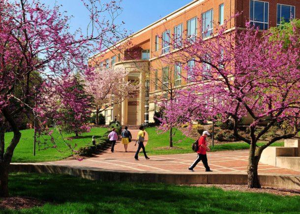 University of North Carolina at Charlotte – UNCC Campus