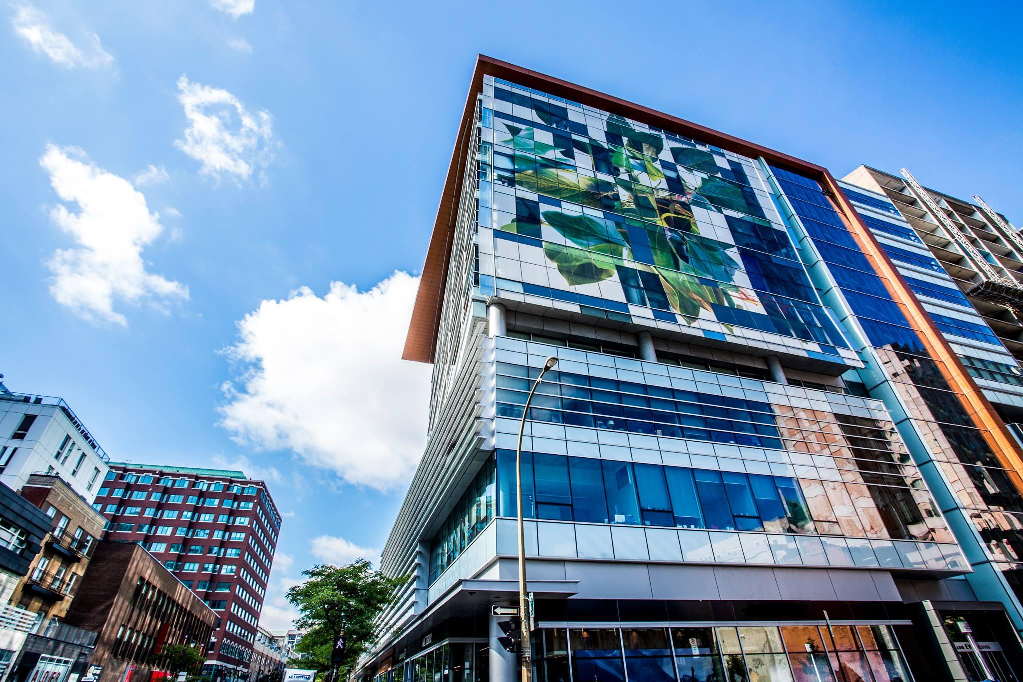 Concordia University Campus