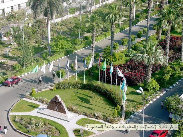Mansoura University Campus