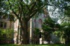 University of Pennsylvania – Penn Campus