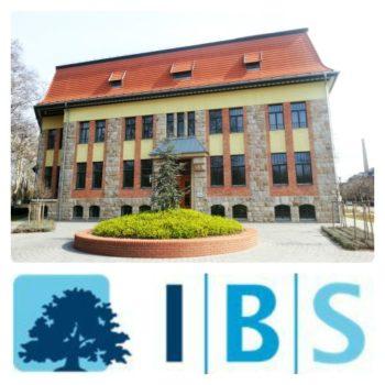 IBS International Business School - IBS logo
