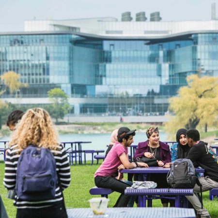 Northwestern University in Qatar Campus