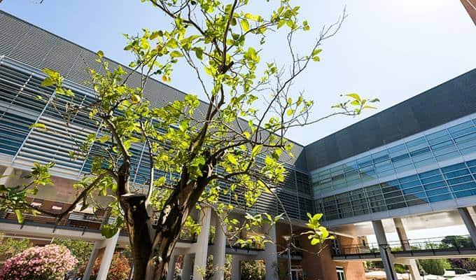 Roma Tre - uniroma3 Campus